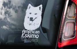Amerikaanse Eskimohond - American Eskimo V01
