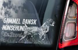 Gammel Dansk Hønsehund V01