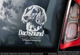 Dashond - Dachshund - V08