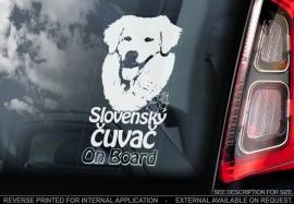 Slovensky Cuvac - Kuvasz V01