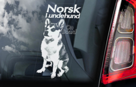 Norsk Lundehund V01