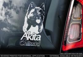 Akita (Amerikaanse) - American Akita - Amerikanische Akita V05