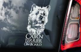Cairn Terrier V01
