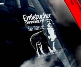 Entlebucher Sennenhond - Entlebucher Sennenhund V01