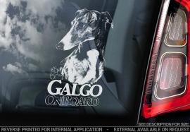 Galgo V02