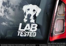 Labrador Pup V01