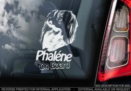 Phalene - vlinderhondje V02