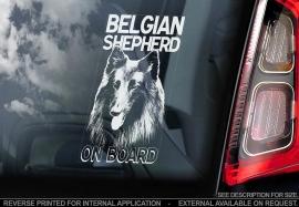 Belgische Herder: Groenedaeler V01