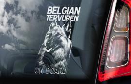 Belgische Herder: Tervuerense V01