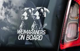Weimaraner V03