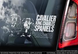 Cavelier King Charles Spaniel V04