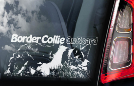 Border Collie V02