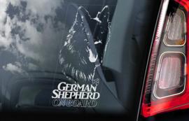 Duitse Herderhond langhaar  - Deutscher Schäferhund - German Shepherd V13
