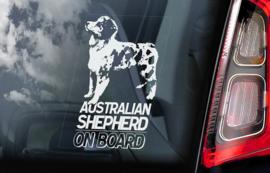 Australian Shepherd V01