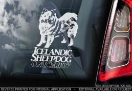 IJslandse Hond - Icelandic Sheepdog V01