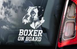 Boxer V01