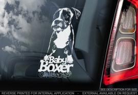 Boxer V