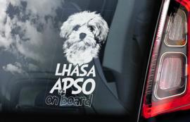 Lhasa Apso V01