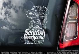 Scottisch Deerhound V01