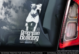 Amerikaanse Bulldog V02
