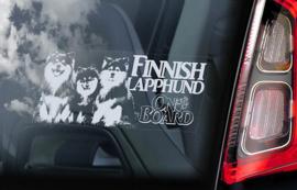 Finse Lappenhond - Finnish Lapphund - Finsk Lapphund V02