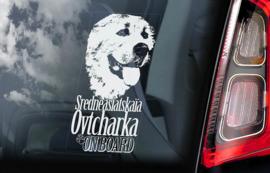 Sredneasiatskaïa Ovtcharka - Centraal  Aziatische Owcharka - Central Asian Shepherd V01