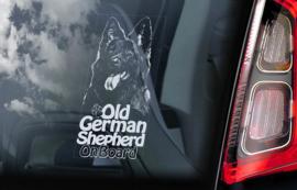 Old German Shepherd - Oud Duitse Herder