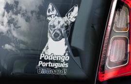 Podengo Portugues V03