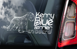 Kerry Blue Terrier V01