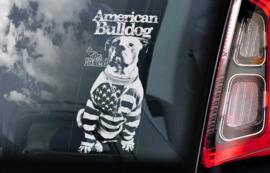 Amerikaanse Bulldog V04