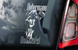 Dobermann ongecoupeerd V03