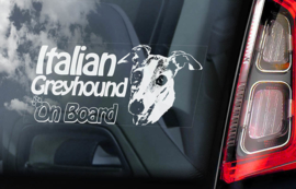 Italiaans Windhondje - Italian Greyhound V02