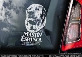 Mastin Espanol - Spanish Mastiff V01