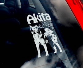 Akita (Japanse) - Japanese Akita - Japanische Akita V01
