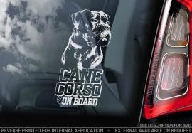 Cane Corso  V06