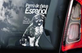 Perro De Agua Espanol -  Spaanse Waterhond - Spanish Water Dog V01