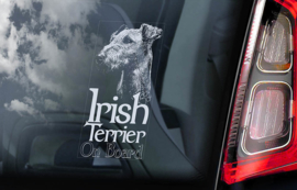 Ierse Terrier - Irish Terrier V02