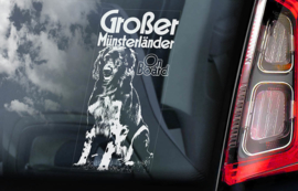Grote Munsterlander - Grosser Munsterlander V01
