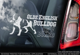 Olde English Bulldog V01