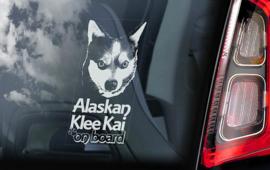Alaskan Klee Kai  V01