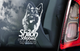 Shiloh Shepherd V01