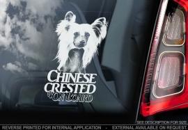 Chinese gekuifde naakthond V3