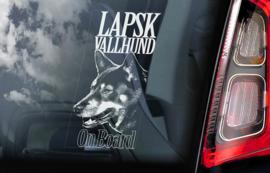 Lapinporokoira (Lapsk Vallhund) V01