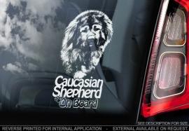 Kaukasische owcharka - Caucasian Shepherd   V02