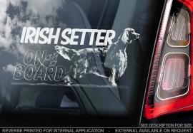 Irish Setter V02
