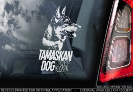 Tamaskan Dog - V01