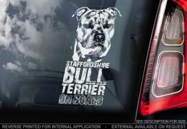 Staffordshire Bull Terrier V03