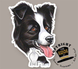 HEADS MAGNEET BORDER COLLIE