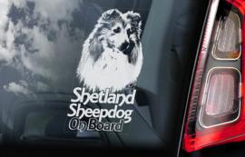 Shetland Sheepdog V02 - Sheltie V04