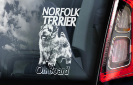 Norfolk Terrier V01